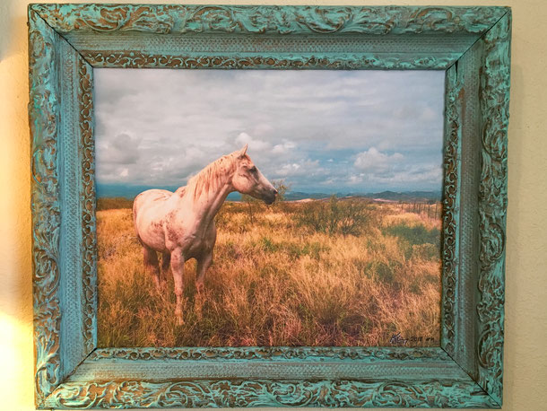 Roaming the Davis Mountains in West Texas after a storm. 19th Century frame, canvas print <still available>