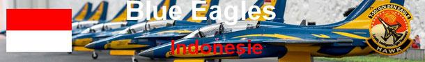 Blue Eagles T50i golden eagle indonesie team acrobatics