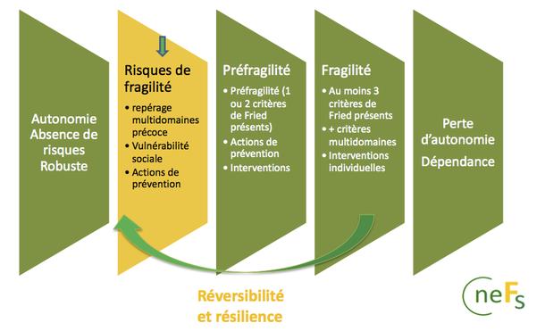 - Axe temporel, de la prévention des risques à la perte d'autonomie (Source : CNEFs) -