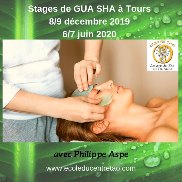 Stages de Gua Sha en Touraine avec Philippe Aspe.