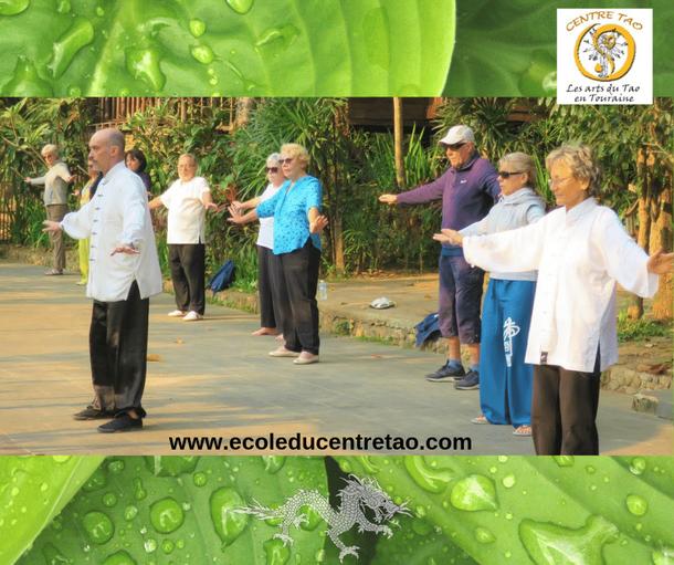 Stage de Qi Gong en Thaïlande avec un groupe de personnes âgées.