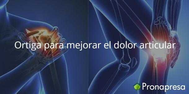 Ortiga para mejorar el dolor articular