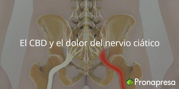 El CBD y el dolor del nervio ciático
