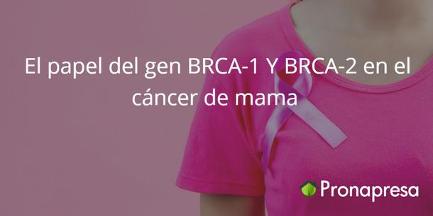El papel del gen BRCA-1 y BRCA-2 en el cáncer de mama