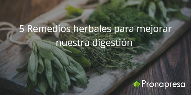 5 remedios herbales para mejorar nuestra digestión