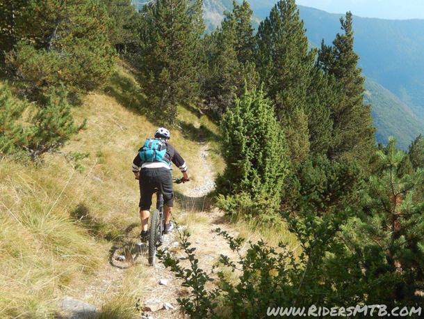 sentiero che raccorda l'ALPE TOUR e l'ALPE di GRANGE PRAPIANO