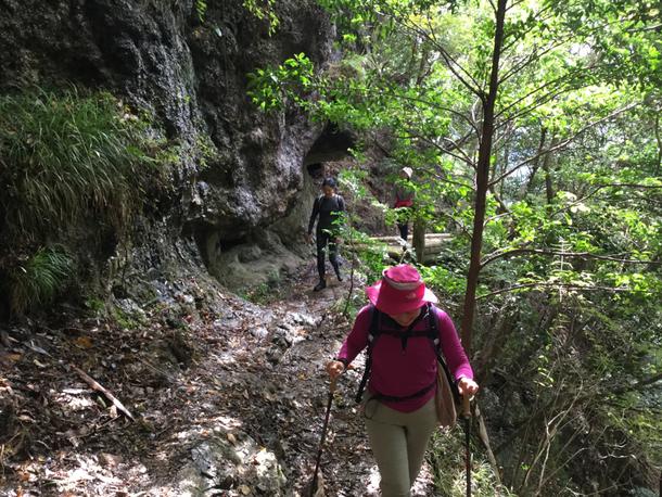 岩肌と階段を過ぎて歩きやすい区間