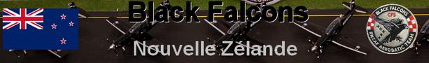 RNZAF Black Falcons maquette 1/72  Beechcraft T-6C Texan II  1:72