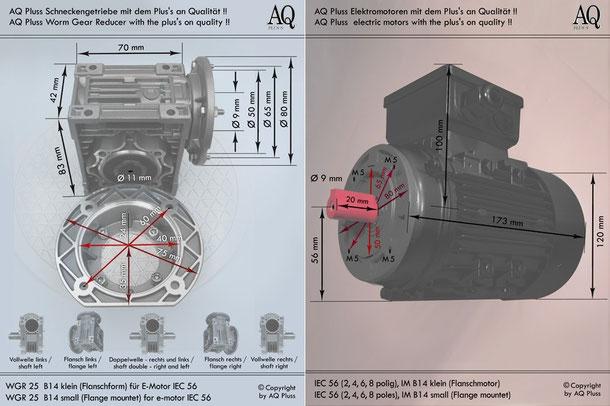 Getriebe » Schneckengetriebe » Einphasen Schneckengetriebe » B14 klein Flanschform