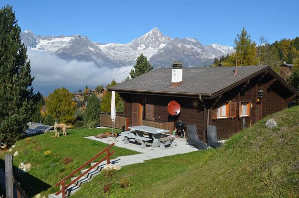 Ferien, Chalet Dunja, Ferienhaus, Wallis, Wald, Wandern, übernachten, Ferienhaus,