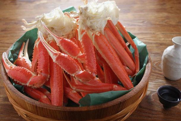 天たつのズボガニは浜茹で当日発送します。福井の名物カニずぼ蟹をご家庭でお召し上がりください