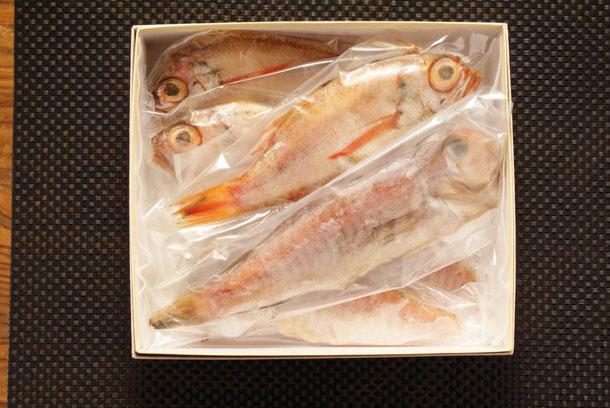 日本海の高級魚「のどぐろ」と福井の美味魚「若狭ぐじ」の干物詰合せが天たつ2016年冬季ギフトとして人気です
