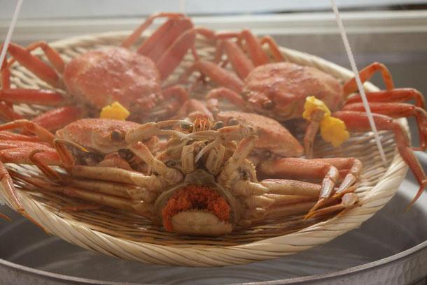 天たつのセイコガニはお渡し、配送当日に茹で上げたおと版美味しい「茹でたてカニ」をとてもわかりやすい「A4版写真入り食べ方図解」と「特製蟹酢」付きでお届け、お渡しさせていただきます