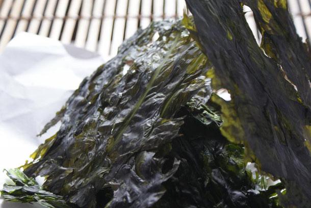 毎年5月にとれます天然板わかめは、手で細かく割ってご飯にふりかけて食べていただくと自然な海の旨味がいっぱいに広がり美味です。福井の初夏の風物詩です