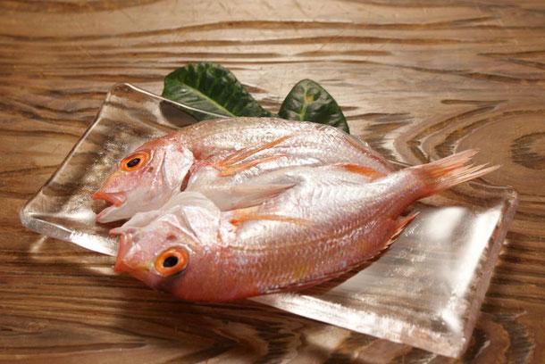 天たつでは4、5月にとれた福井の小鯛を薄塩で干し、一夜干しに仕上げました。お酒の肴に、旨味濃いです