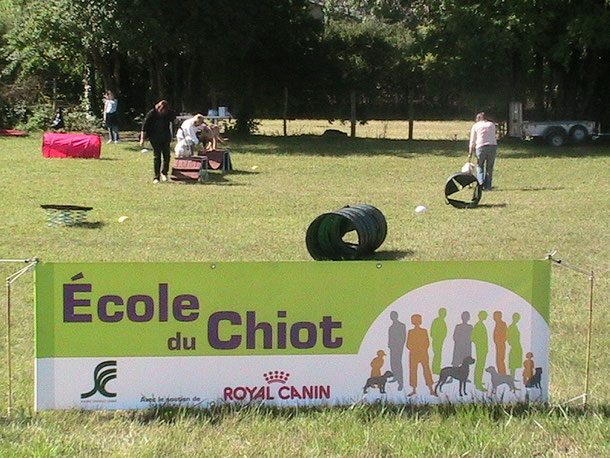 L'Ecole du Chiot