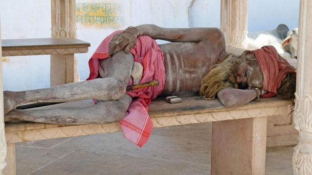 """Ein Sadhu mit Rastalocken (Jata) und heiliger Asche (Vibhuti) bedeckt in Pushkar. Wörtl.: (""""Guter oder auch: Heiliger Mann"""") ist im Hinduismus ein Oberbegriff für jene, die sich einem religiösen, teilweise streng asketischen Leben verschrieben haben."""