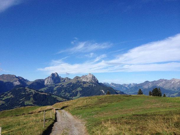 Höhenwanderung Hornberg bis Turbach