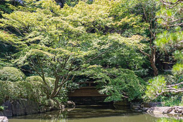 港区 東京都庭園美術館 出張撮影 カジュアルフォト 誕生日撮影 日本庭園