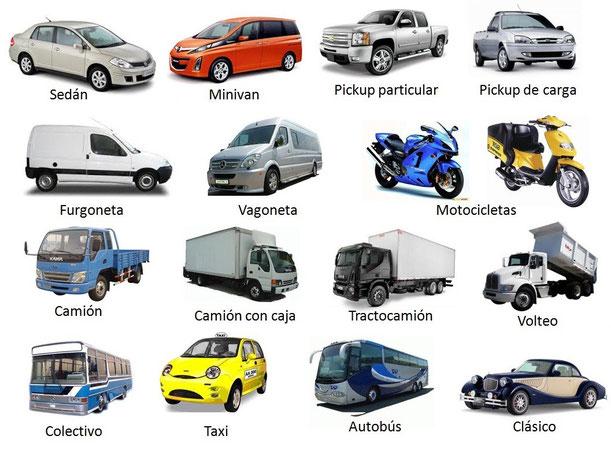 Seguro para todo tipo de autos
