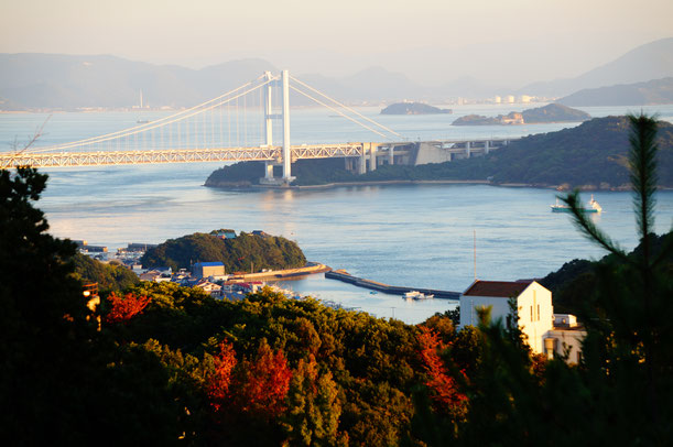 紅葉と瀬戸大橋。