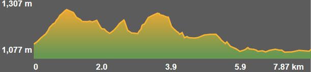 Perfil ruta senderisme Ruta del Segre - Ruta de la Muntanya