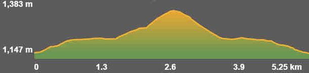 Perfil ruta senderisme TC196 Alp - Roca castellana