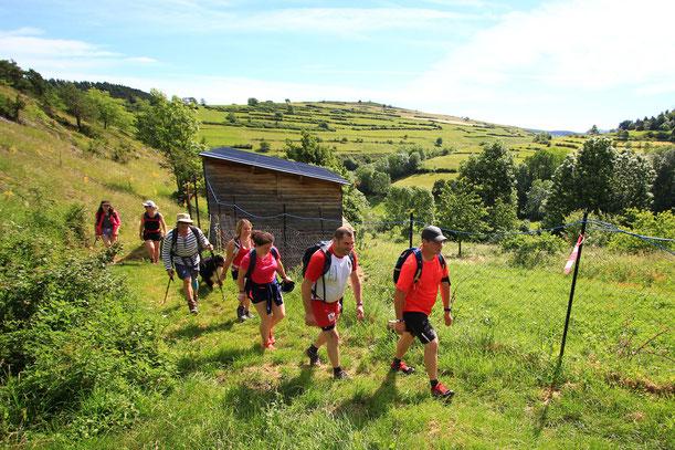 Tour du Picou d'Arques - Rando Pyrénées Audoises