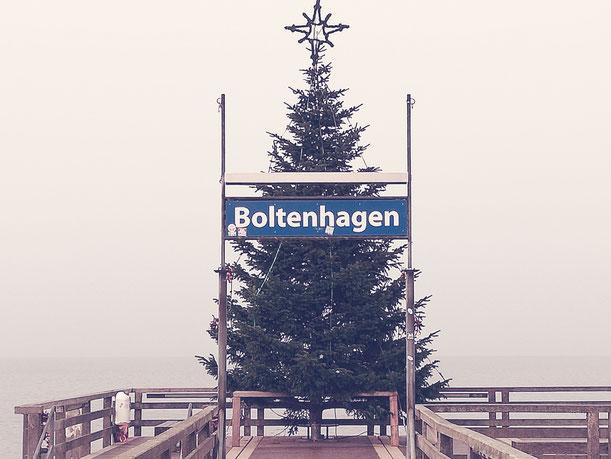 Tannenbaum Seebrücke Boltenhagen