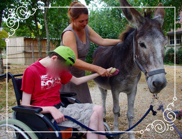 Séance de médiation animale avec une personne polyhandicapée et notre âne Kaliméro
