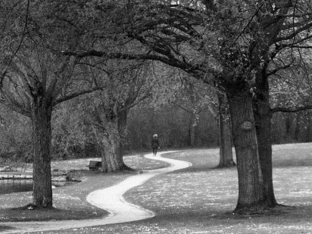 Bonn, Rheinaue, Frau, einsam, mäandernder Weg, schlangenlinien, way alone, walking, park, relax, Schwarzweissfotografie, kreative Fotografie, Fototipps