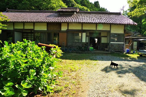 隠岐の島 ゲストハウス 佃屋