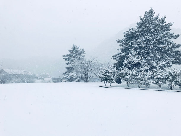 隠岐の島 京見屋分店 冬