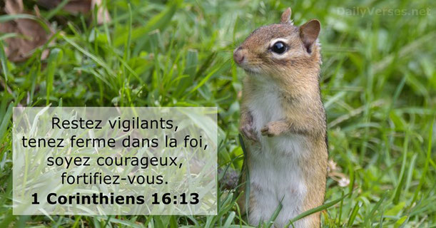 Restez vigilants, tenez ferme dans la foi, soyez courageux, fortifiez-vous. Gardons courage, nous commençons maintenant notre marche pour la vraie liberté, pour la fidélité à Dieu et au Royaume messianique qui, lui, instaurera réellement la vraie justice.
