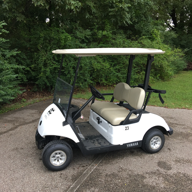 rental cart 2 seat Yamaha