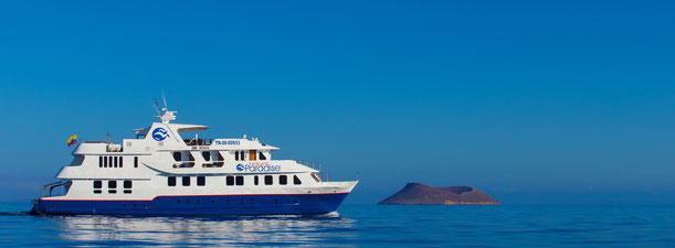Kreuzfahrt Galapagos Inseln auf der Natural Paradise