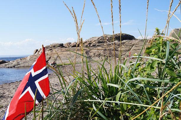 Der Covacoro-Blog macht Sommerpause in Norwegen.