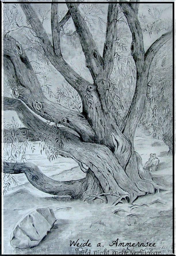 Zeichnung auf grauem Papier mit Weissem Gelstift u. Buntstiften