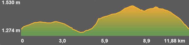 Perfil de la ruta de senderisme a peu circular de Sallagosa - Bajanda