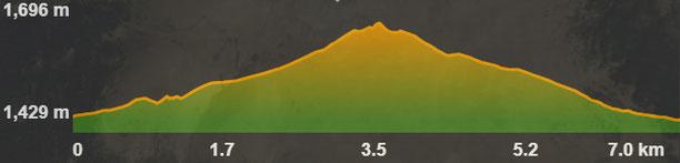 Perfil de la ruta del salt del molí de la Llosa