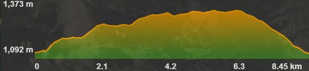 Perfil de la ruta circular de Prullans a la cova d'Anes