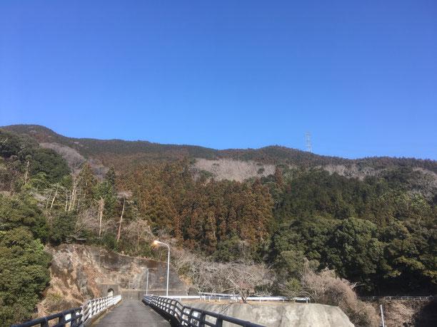 原野谷ダム