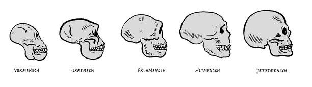 Vormensch, Urmensch, Frühmensch, Altmensch, Jetztmensch, Neues-Museum, Niels-Schröder