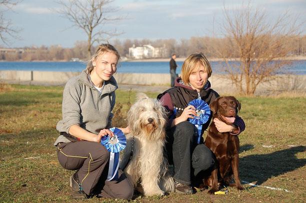 Победители трасс аджилити - класс щенки и класс дебют