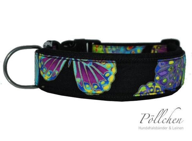 Nylonhalsband mit weicher Neoprenpolsterung in bunten Farben