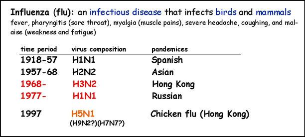 表1 ウイルスの発生時期と亜型。