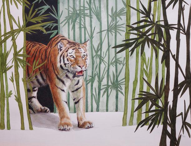 Tiger, Farbstift, Aquarell auf Aquarellpapier