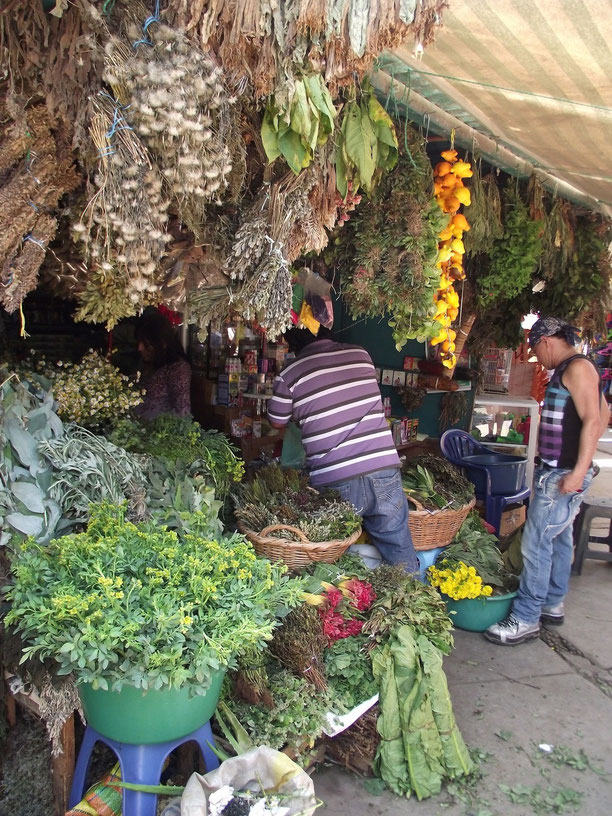 Chiclayo witch doctors' market herbs
