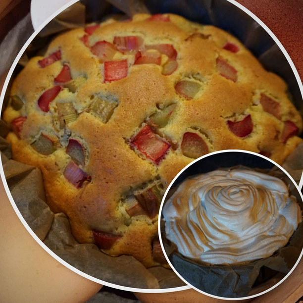 saftiger Rhabarber - Baiser - Kuchen - schnell und vanillig