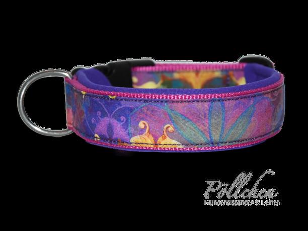 Halsband violett pink bunt mit Neopren Farbverlauf lila - auch als Zugstopphalsband